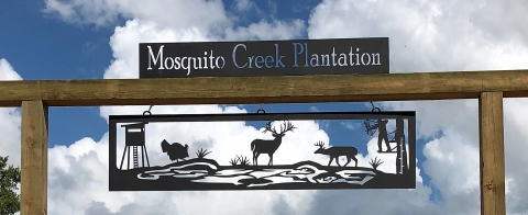 Mosquito_Creek_Plantation2